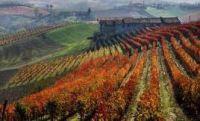 Soddisfazione di Agrinsieme per il via libera di Montecitorio al Collegato agricolo